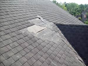 Preserve The Integrity Of Your Roof With Expert Roof Repair Services